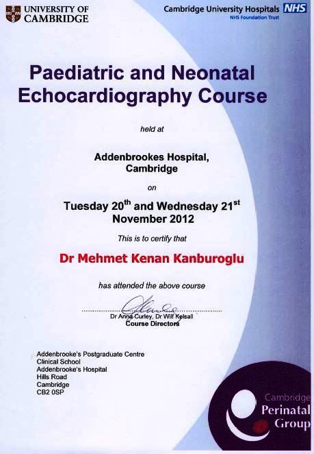 2012_neonatal-echocardiography